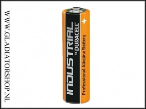 Duracell Industrial AA penlite